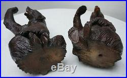 Antique Brienz Black Forest Large Couple Of Sitting Bears1880